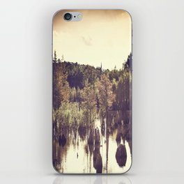 Dead Lakes With A Vintage Twist  iPhone Skin