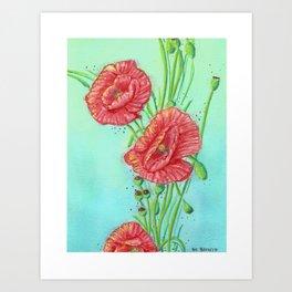 Corn Poppy Art Print