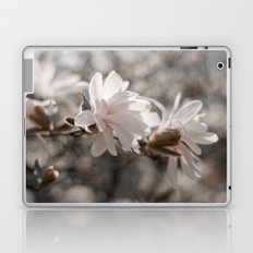 Magnolia Dreaming Laptop & iPad Skin