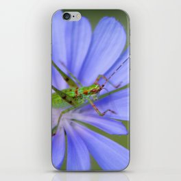 Jiminy Cricket iPhone Skin