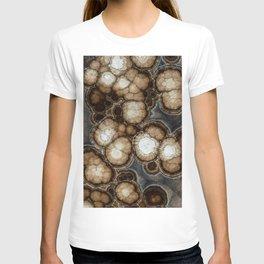 Earth treasures - brown jaspis T-shirt