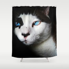 Cat siamese blue eyes Shower Curtain