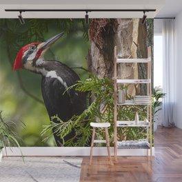 Pileated Woodpecker 6340 Wall Mural