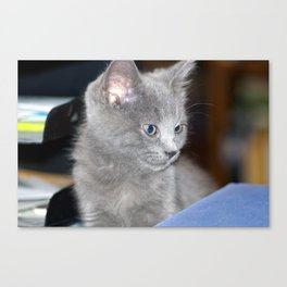 Young Hodge Canvas Print