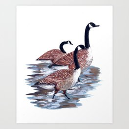 Canadiana Art Print