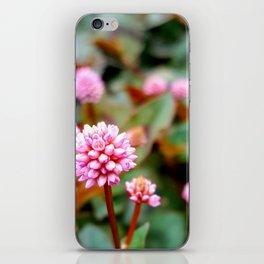 little iPhone Skin