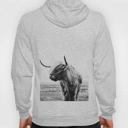 Highland Cow Art Hoody
