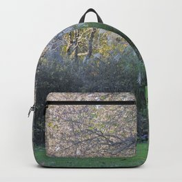 Seeking Solace III Backpack
