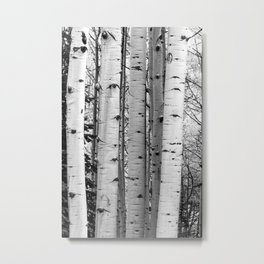 Into the Woods / Black & White Metal Print