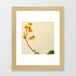 You're my sunshine succulent photo Framed Art Print