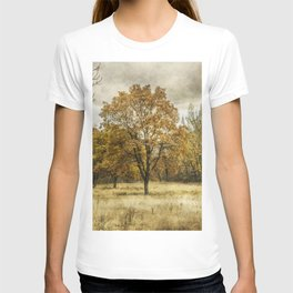 Pictorial autumn T-shirt