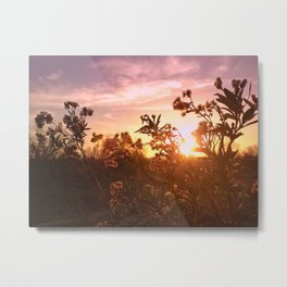Riverside Weeds Metal Print