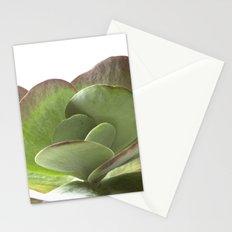 Succulent Big Leaf Stationery Cards