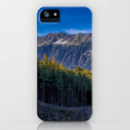 Arch of Larch iPhone Case