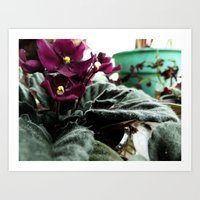 To Be Warm In Winter Art Print