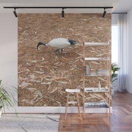 Ibis Bird Wall Mural