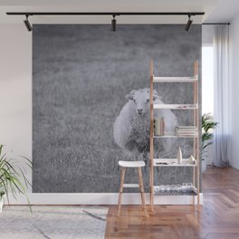 Icelandic Sheep Wall Mural