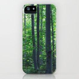 morton combs 02 iPhone Case