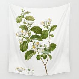Snowdrop bush Styrax officinale from Traite des Arbres et Arbustes que lon cultive en France en plei Wall Tapestry