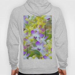 I Love Orchids ... By LadyShalene Hoody