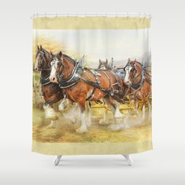 Clydesdales In Harness Shower Curtain