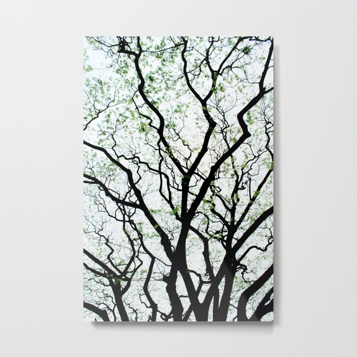 Majestic Roots Metal Print