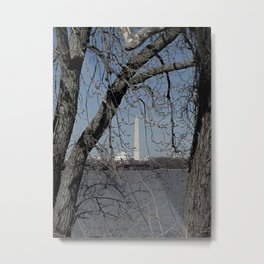Through the Branches Metal Print