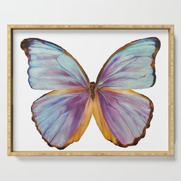 Butterfly with White Background Serving Tray