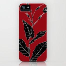 Rock Pituri (Also known as Bone Marrow Tobacco) - Nicotiana gossei iPhone Case