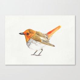 Little Watercolour Robin Canvas Print