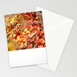 Fall Day Stationery Cards