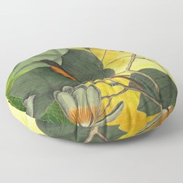 Baltimore Oriole on Tulip Tree, Vintage Natural History and Botanical Floor Pillow