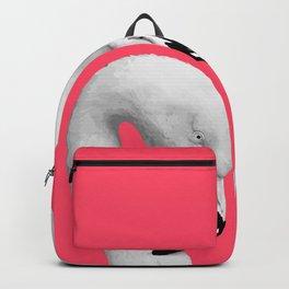 Flamingo 1 Backpack