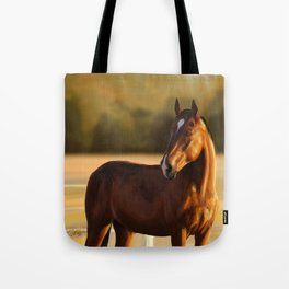 Looking of to the sunset Tote Bag