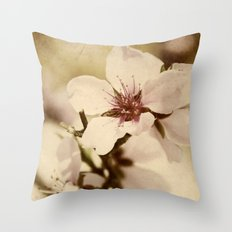 Apricot Bloom Throw Pillow