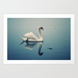 Act II: By a Lake: Scene: The swans swim on the lake Art Print