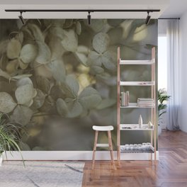 Delicate hydrangea flower close-up Wall Mural