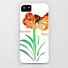 Amaryllis Amore iPhone Case