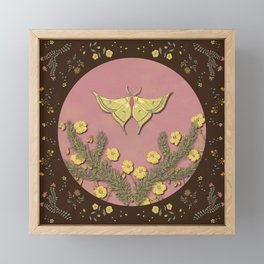Moon Moth Framed Mini Art Print