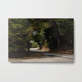 Country Road, California Metal Print