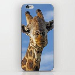 The Giraffe II iPhone Skin