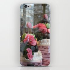 Window Shopping iPhone & iPod Skin