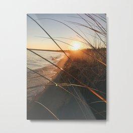 sunset shining through tall grass on the coast Metal Print