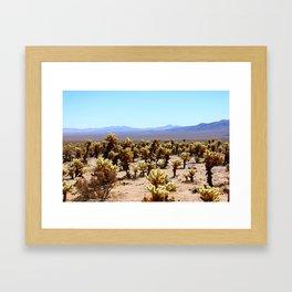 Spring Time in Joshua Tree Framed Art Print