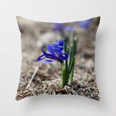 Mini Iris Throw Pillow