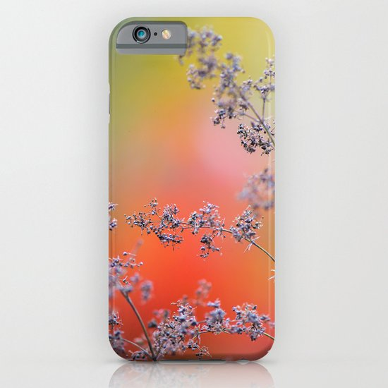 Flowers in autumn iPhone & iPod Case