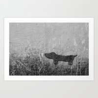 daschund Art Prints featuring Datsun by Parrish House Photos