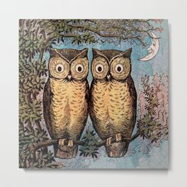 Two Owls & The Moon Metal Print