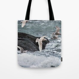 Gulls shop for Dinner Tote Bag