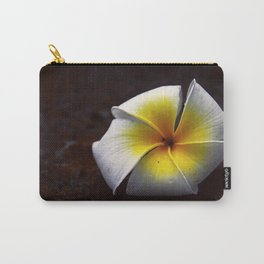 # 339 Carry-All Pouch